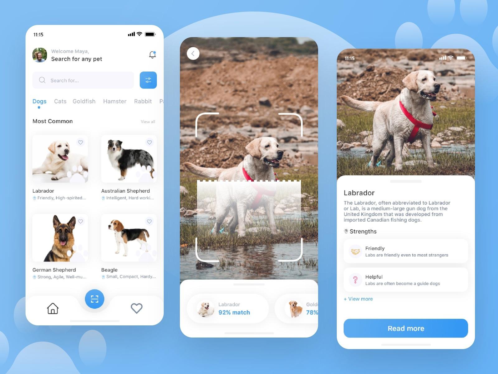 宠物品种识别器应用程序概念套件插图