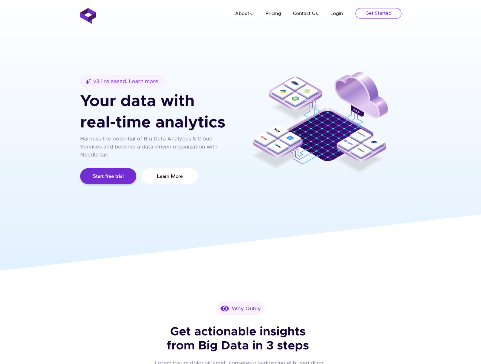 数据分析/集成网站页面设计模板插图2