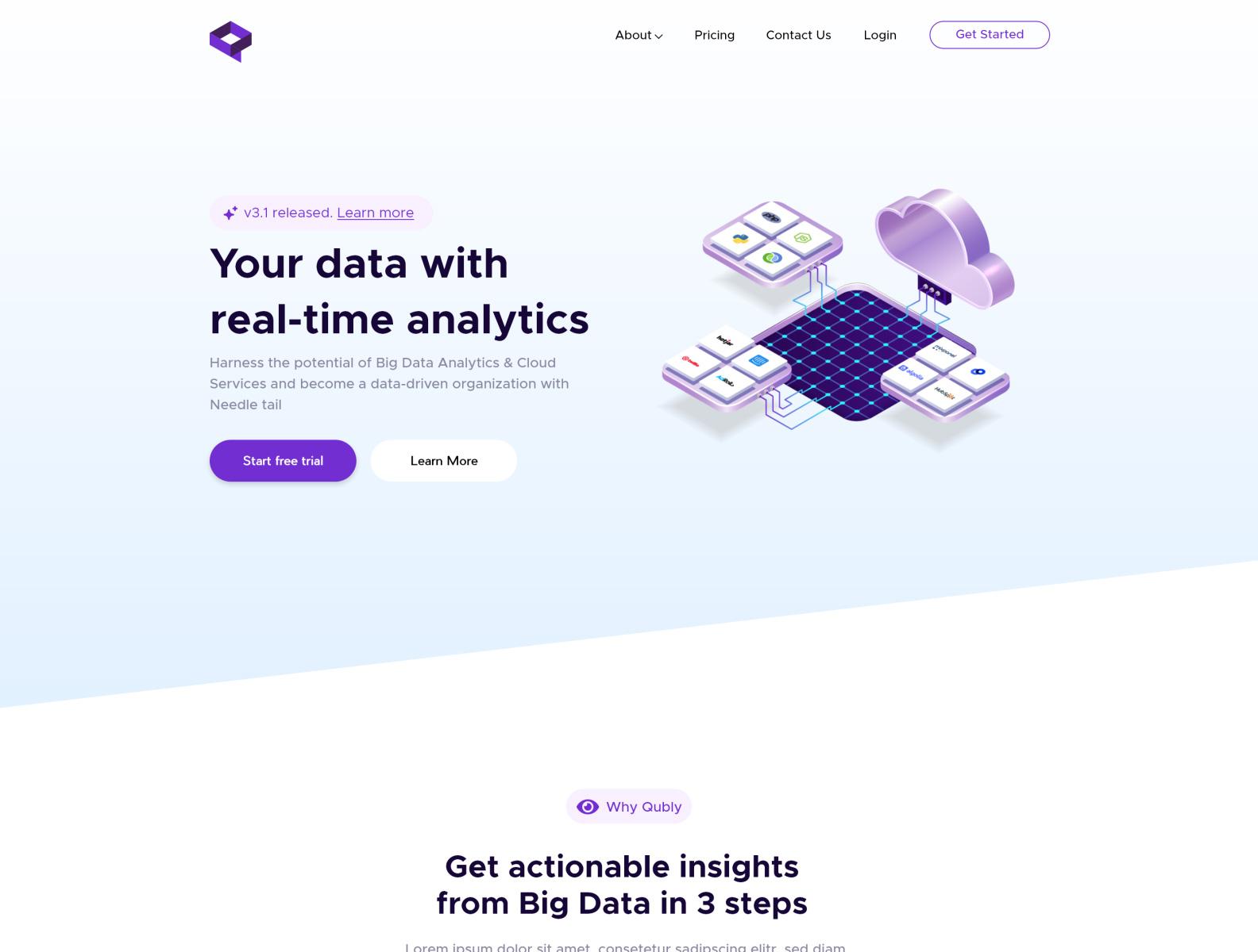 数据分析/集成网站页面设计模板插图1