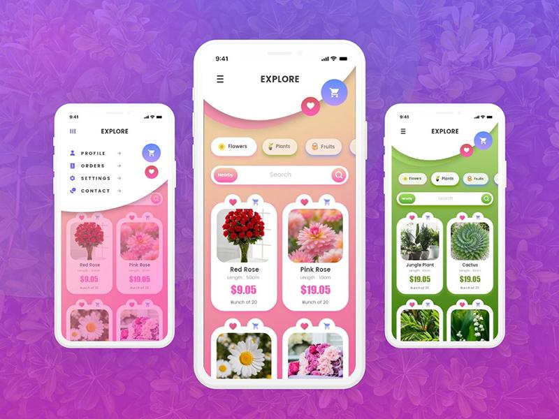 花卉订购App应用程序概念设计模板插图